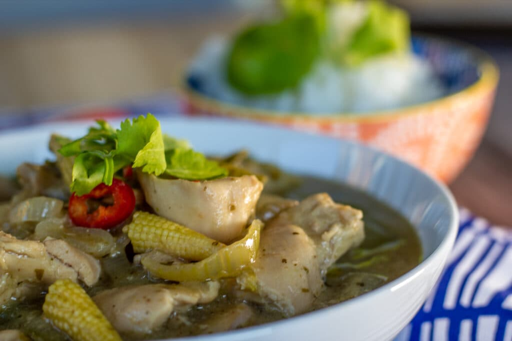 Slow Cooker Thai Green Curry and Rice